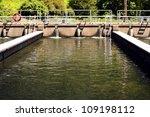 Leaburg Fish Hatchery