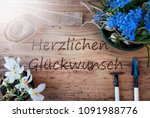 sunny spring flowers ...   Shutterstock . vector #1091988776
