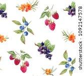 watercolor berry pattern ... | Shutterstock . vector #1092147578