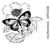 butterfly | Shutterstock . vector #1092168