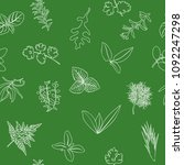 popular culinary herbs seamless ... | Shutterstock .eps vector #1092247298