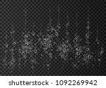 champagne. effervescent drink.... | Shutterstock .eps vector #1092269942