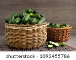 harvest of cucumbers in a... | Shutterstock . vector #1092455786