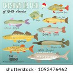 freshwater fish of north... | Shutterstock .eps vector #1092476462