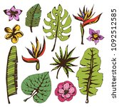 tropical  flowers  leaves. hand ... | Shutterstock .eps vector #1092512585
