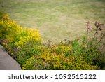 landscape design near the house | Shutterstock . vector #1092515222