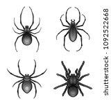 black spider set on a white... | Shutterstock .eps vector #1092522668