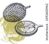 durian. realistic vector... | Shutterstock .eps vector #1092603962