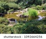 beautiful pound in sad... | Shutterstock . vector #1092664256