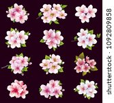 set of beautiful cherry and... | Shutterstock . vector #1092809858