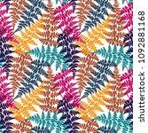 fern frond herbs  tropical... | Shutterstock .eps vector #1092881168