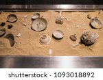 ancient pottery in asia.   Shutterstock . vector #1093018892