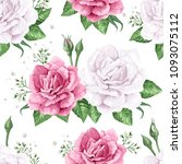 rose flowers  petals and leaves ...   Shutterstock .eps vector #1093075112