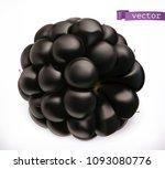 blackberry. fresh fruit 3d... | Shutterstock .eps vector #1093080776