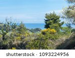 landscapes of mediterranean... | Shutterstock . vector #1093224956