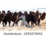 gobi desert  may 2018  mongolia ... | Shutterstock . vector #1093274042