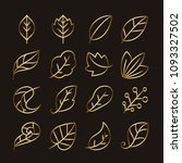 golden leaves icon set vector | Shutterstock .eps vector #1093327502