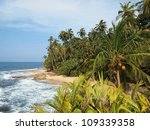 Untouched Tropical Beach With...