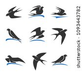 martlet set. vector bird | Shutterstock .eps vector #1093443782