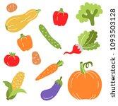 flat colorful vegetables fresh... | Shutterstock .eps vector #1093503128