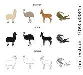 lama  ostrich emu  young... | Shutterstock .eps vector #1093533845