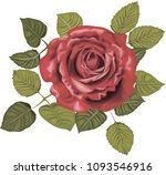 red rose   vintage vector roses | Shutterstock .eps vector #1093546916