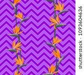 tropical flower bird of... | Shutterstock .eps vector #1093604636