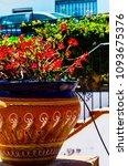 beautiful ceramic flower pot on ...   Shutterstock . vector #1093675376