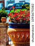 beautiful ceramic flower pot on ...   Shutterstock . vector #1093675382