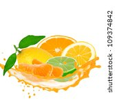 citrus fruit with splash... | Shutterstock . vector #109374842