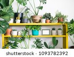 houseplant with home decoration | Shutterstock . vector #1093782392