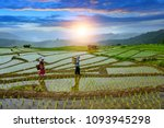 pa pong peang rice terrace... | Shutterstock . vector #1093945298