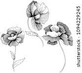 vector poppy. floral botanical... | Shutterstock .eps vector #1094229245