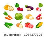 vegetables  set of colored... | Shutterstock .eps vector #1094277308