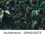 beautiful nature background of... | Shutterstock . vector #1094318375