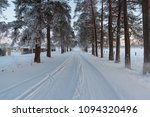snowy forest alley in the... | Shutterstock . vector #1094320496