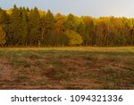 dense forest and field in the... | Shutterstock . vector #1094321336