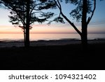 two large trees on the... | Shutterstock . vector #1094321402