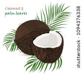 coconut  whole and pieces with...   Shutterstock .eps vector #1094376338