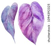 watercolor illustrations.... | Shutterstock . vector #1094392325