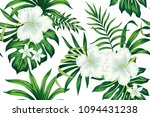 tropical white hibiscus... | Shutterstock .eps vector #1094431238