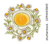 cup of chamomile tea | Shutterstock .eps vector #1094445845