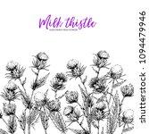 hand drawn wild flowers. milk... | Shutterstock .eps vector #1094479946