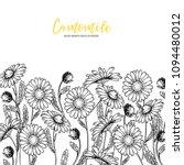 hand drawn wild hay flowers.... | Shutterstock .eps vector #1094480012