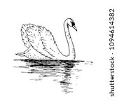 vector swan illustration with... | Shutterstock .eps vector #1094614382