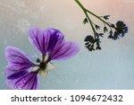 dry flowers and art   Shutterstock . vector #1094672432