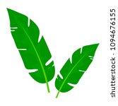 green leaves of banana palm... | Shutterstock .eps vector #1094676155