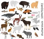 Wild Animals Of Canada Color...