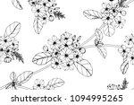 seamless flower pattern... | Shutterstock .eps vector #1094995265