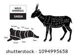 cut of antelope set. poster... | Shutterstock .eps vector #1094995658